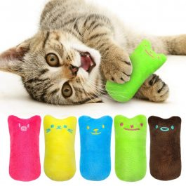 Interactive Cat Chewing Toy